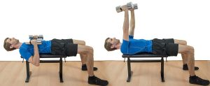 The Dumbbell Bench Press